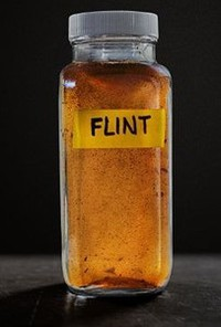Flint main cover