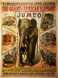Attenborough and the Giant Elephant main cover