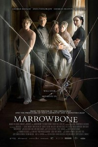 The Secret of Marrowbone main cover