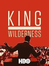 King in the Wilderness movie cover
