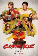 cobra_kai movie cover