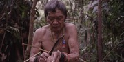 Tawai: A Voice from the Forest movie photo