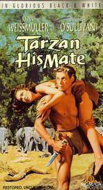 tarzan_and_his_mate movie cover