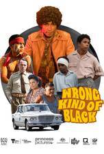 wrong_kind_of_black movie cover