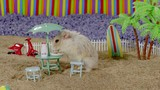 Horror and Hamsters movie photo
