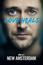 New Amsterdam movie cover