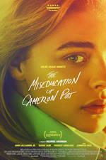 the_miseducation_of_cameron_post movie cover