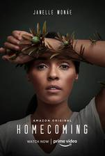 homecoming_2018_3 movie cover