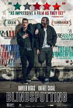 Blindspotting movie cover