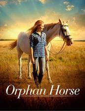 orphan_horse movie cover