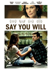Say You Will main cover