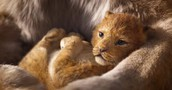 The Lion King movie photo