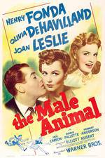 the_male_animal movie cover
