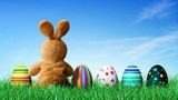 Easter Land movie photo