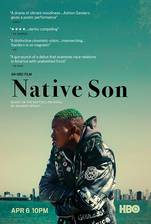 native_son_2019 movie cover