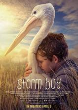 Storm Boy movie cover