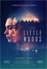 Little Woods movie cover