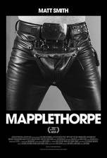 Mapplethorpe movie cover