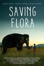Saving Flora movie cover