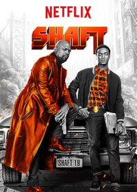 Shaft main cover