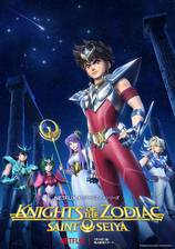 saint_seiya_knights_of_the_zodiac movie cover