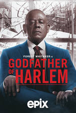 godfather_of_harlem movie cover