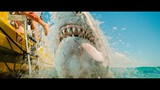 47 Meters Down 2: Uncaged (The Next Chapter) movie photo