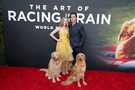 The Art of Racing in the Rain movie photo
