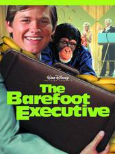 the_barefoot_executive movie cover