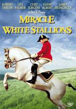miracle_of_the_white_stallions movie cover
