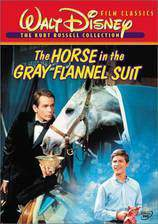 the_horse_in_the_gray_flannel_suit movie cover