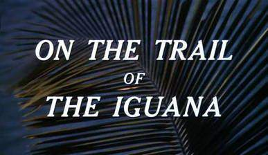 on_the_trail_of_the_iguana movie cover