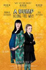 a_bump_along_the_way movie cover