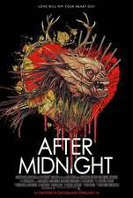 After Midnight movie cover