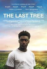 the_last_tree movie cover