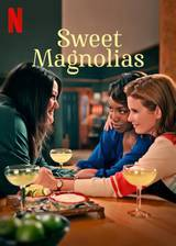 sweet_magnolias movie cover