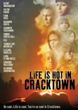 life_is_hot_in_cracktown movie cover