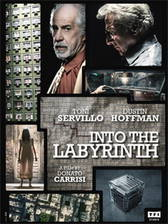 Into the Labyrinth movie cover
