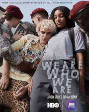 we_are_who_we_are movie cover
