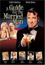 a_guide_for_the_married_man movie cover