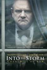 into_the_storm movie cover