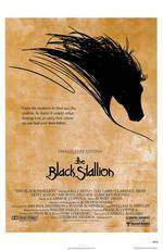 the_black_stallion movie cover