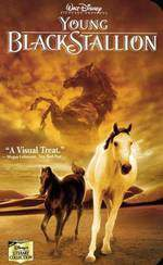 the_young_black_stallion movie cover
