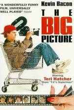 the_big_picture movie cover