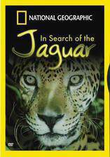 in_search_of_the_jaguar movie cover