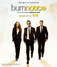 Burn Notice movie cover