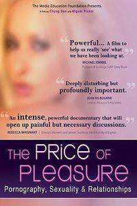 The Price of Pleasure: Pornography, Sexuality & Relationships main cover
