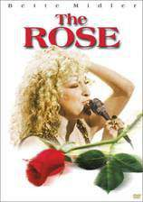 the_rose movie cover