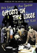 ghosts_on_the_loose movie cover