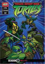 teenage_mutant_ninja_turtles_2003 movie cover